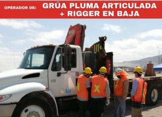 Operador Grúa Pluma Articulada y Rigger